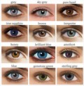 contact-lenses-anual-small.jpg